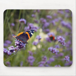 Red Admiral Butterfly Mouse Pad