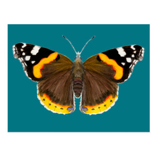 Red Admiral Butterfly Watercolor Painting Artwork Postcard