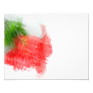 Red Alstroemeria Bush in Abstract Photo Print