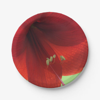 Red Amaryllis Flower Paper Plates