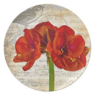 Red Amaryllis Melamine Plate