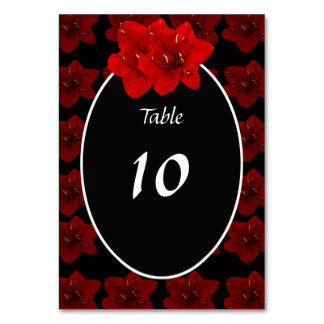 Red Amaryllis wedding table card