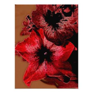 Red And Claret Petunia Photo Print