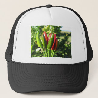Red and green peppers hanging on the plant trucker hat