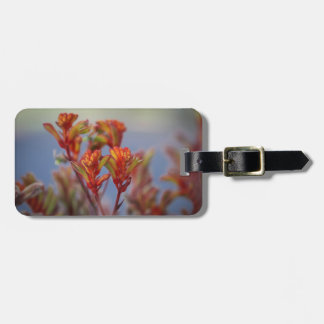 Red and Green Plant Bag Tag