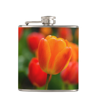 Red and Orange Tulips in the Garden Hip Flask