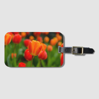 Red and Orange Tulips in the Garden Luggage Tag