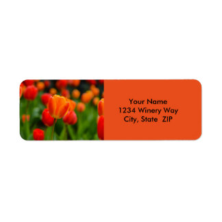 Red and Orange Tulips in the Garden Return Address Label