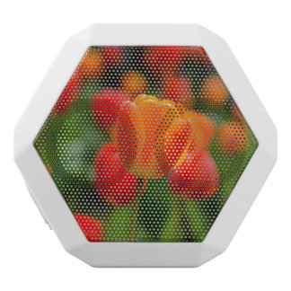 Red and Orange Tulips in the Garden White Bluetooth Speaker