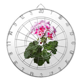 Red And Pink Geranium Dartboard With Darts