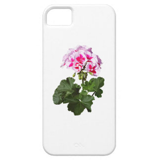 Red And Pink Geranium iPhone 5 Cases