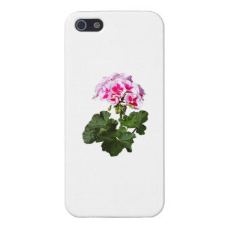 Red And Pink Geranium iPhone 5 Covers