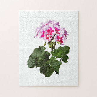 Red And Pink Geranium Jigsaw Puzzle
