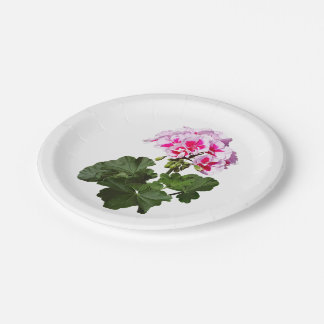 Red And Pink Geranium Paper Plate