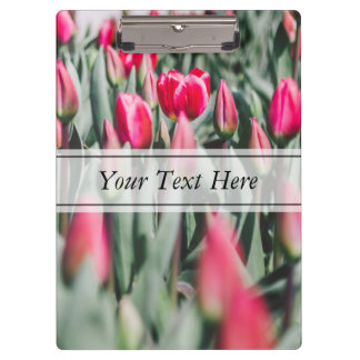 Red and Pink Tulips, Flower Field in Spring Clipboards