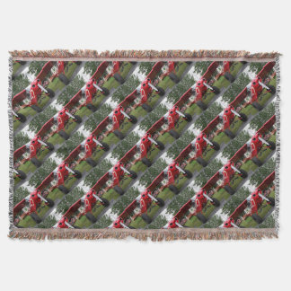 Red and white aircraft, Alaska Throw Blanket