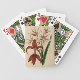Red and White Amaryllis Flower Bicycle Playing Cards