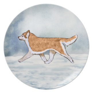 Red and White Blue Eyes Siberian Husky Plate