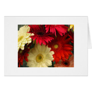 """""""Red and White Chrysanthemums"""" Card"""