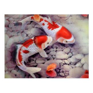 Red and White Koi Fish Pond Postcard