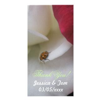 Red and White Ladybug Petals Wedding Photo Card