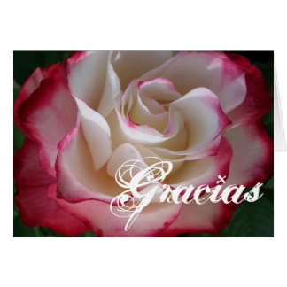 Red and White Rose Gracias Card