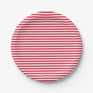 Red and White Stripes Paper Plate