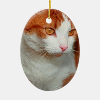 RED AND WHITE TABBY CAT ORNAMENT