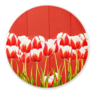 Red and white tulips ceramic knob