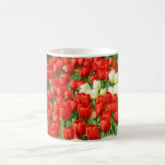 Red and white tulips coffee mug