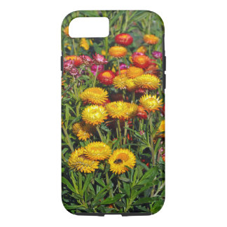 Red and yellow button flowers iPhone 8/7 case