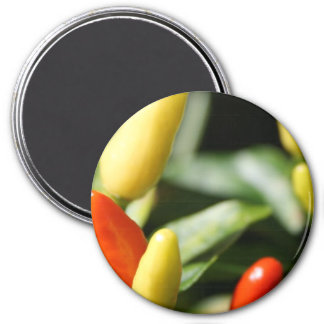 Red and Yellow Chilli Plant 3 Inch Round Magnet