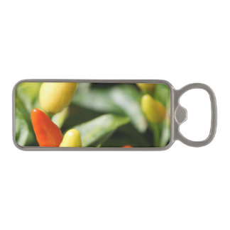 Red and Yellow Chilli Plant Magnetic Bottle Opener