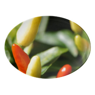 Red and Yellow Chilli Plant Porcelain Serving Platter