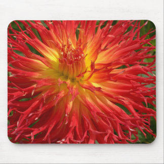 Red And Yellow Crazy Dahlia Multiple Items Mouse Pad