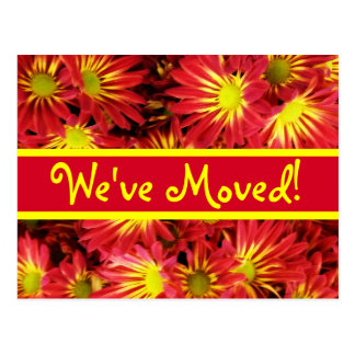 Red and Yellow Daisies Moving Announcement Postcar Postcard