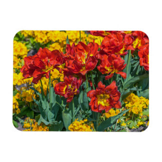 Red and yellow flowers fridge magnet