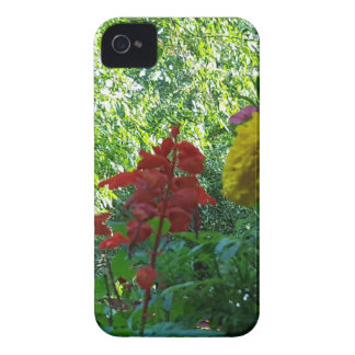 Red And Yellow Flowers Outdoor Photography iPhone 4 Covers