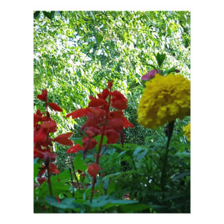 Red And Yellow Flowers Outdoor Photography Letterhead Design