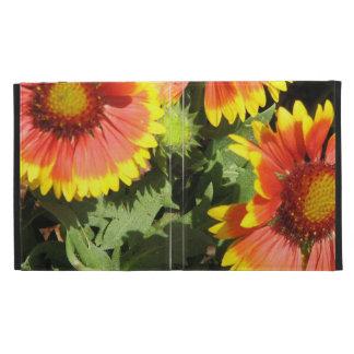 Red and Yellow Gaillardia Flowers iPad Cases