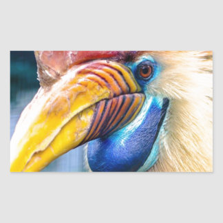 Red and Yellow Hornbill Sticker