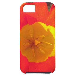 Red and yellow open tulip flower case for the iPhone 5