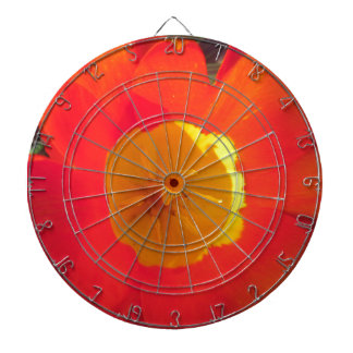 Red and yellow open tulip flower dartboard