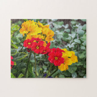 Red and yellow primroses photo puzzle