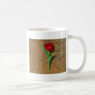 Red and Yellow Tulip Classic White Coffee Mug