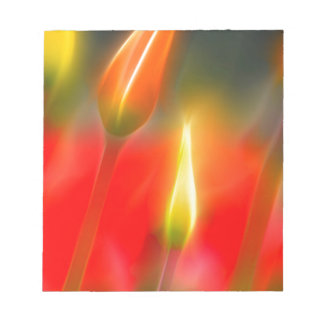 Red and Yellow Tulip Glow Notepad