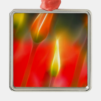Red and Yellow Tulip Glow Silver-Colored Square Ornament