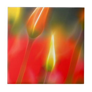 Red and Yellow Tulip Glow Tile