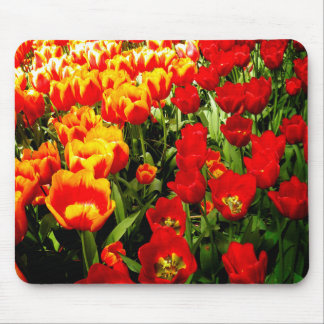 Red and Yellow Tulip Mouse Pad