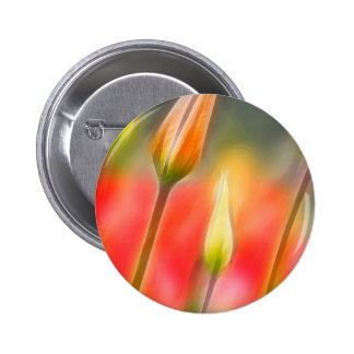 Red and Yellow Tulip Sketch 2 Inch Round Button